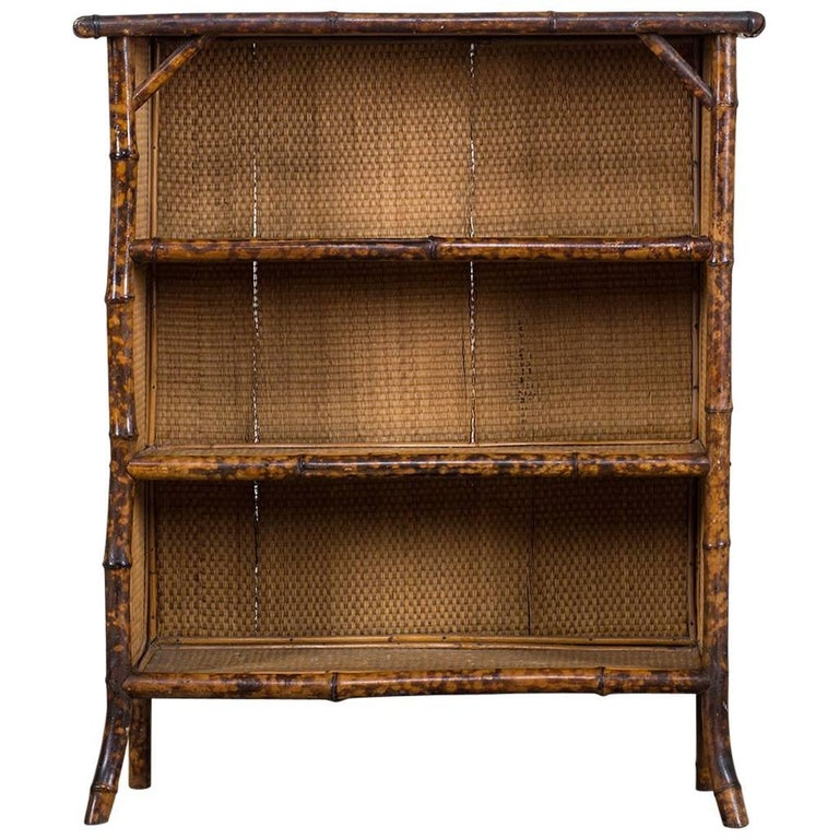 Antique English Faux Bamboo Display Cabinet or Bookcase, circa 1875