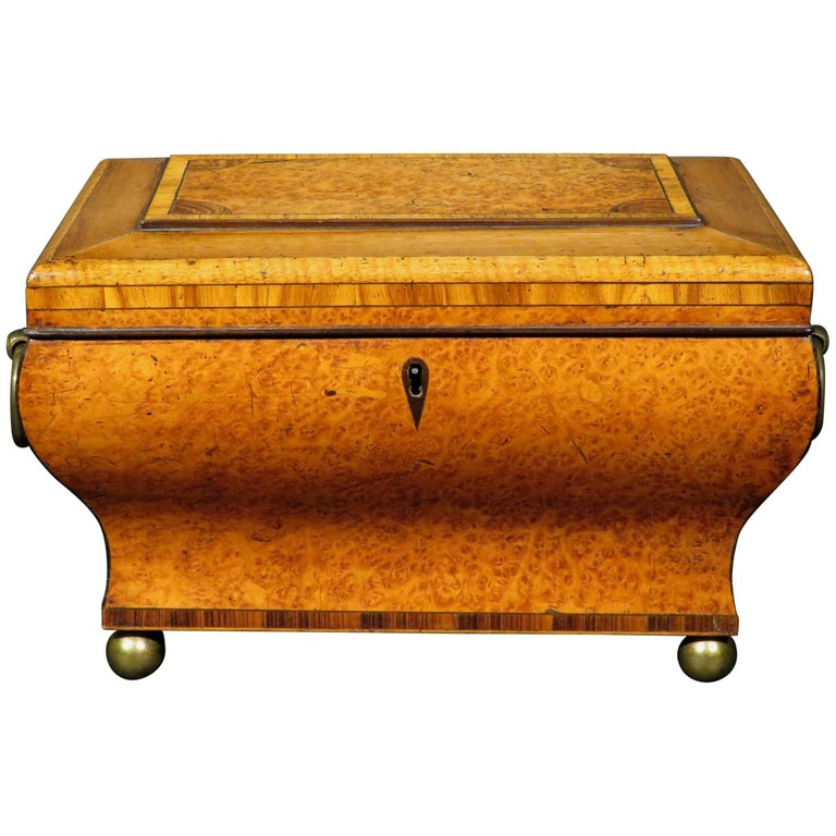 Very Fine Biedermeier Tea Caddy of Bombe Form in Exotic Woods, Circa 1830 For Sale