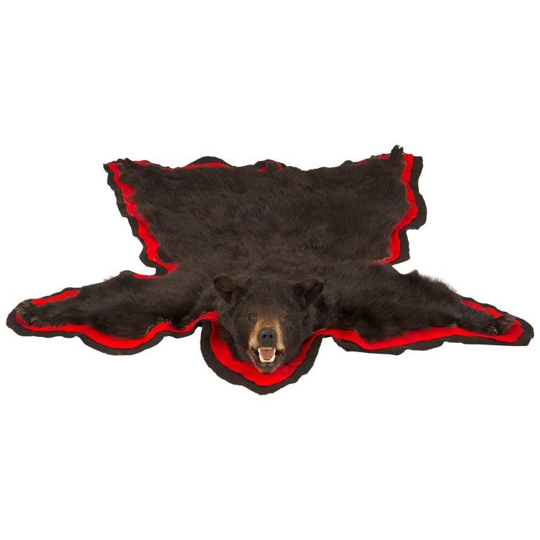 American Taxidermy Black Bear Rug For
