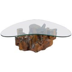 Midcentury Italian Solid Burl-Root Tree Coffee Table Boomerang Shaped Glass Top