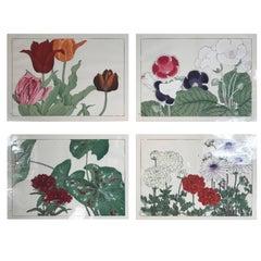 Japanese Old Woodblock Flower Prints Tanigami Konan Immediately Frameable #6