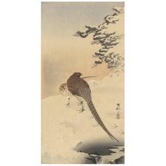 Koson Ohara, Couple of Pheasants, Nature, Snow, Pine, Japanese Woodblock Print