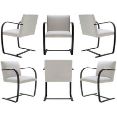 Brno Flat-Bar Chairs in Dove Velvet, Obsidian Gloss Frame, Set of Six