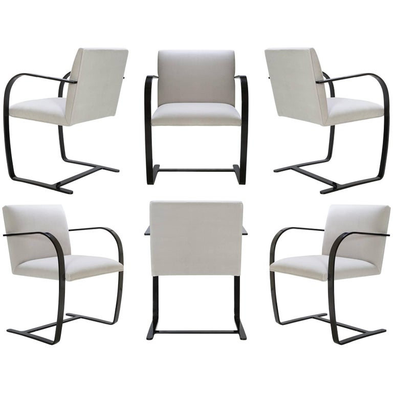 Brno Flat-Bar Chairs in Dove Velvet, Obsidian Gloss Frame, Set of Six For Sale