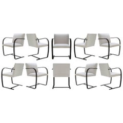 Brno Flat-Bar Chairs in Dove Velvet, Obsidian Gloss Frame, Set of Ten