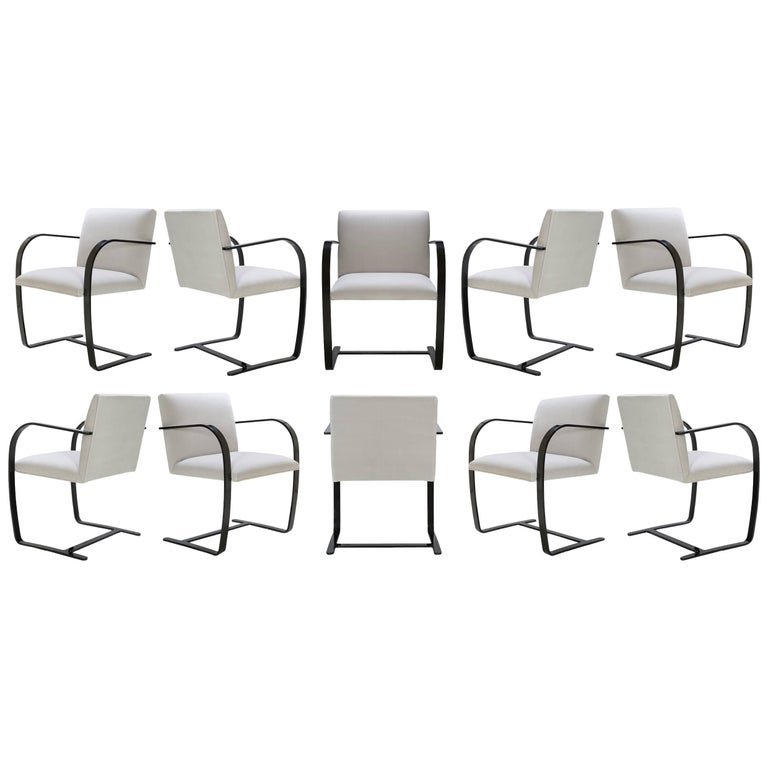 Brno Flat-Bar Chairs in Dove Velvet, Obsidian Gloss Frame, Set of Ten