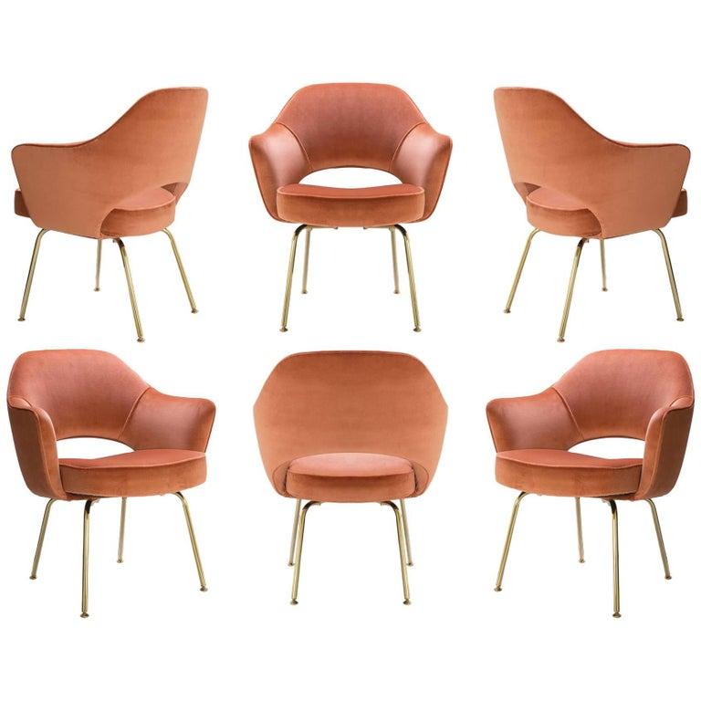 Saarinen Executive Arm Chairs in Rust Velvet, 24k Gold Edition, Set of Six