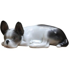 Porcelain lying French Bulldog Puppy, Pfeffer Gotha Germany, 1934-1942