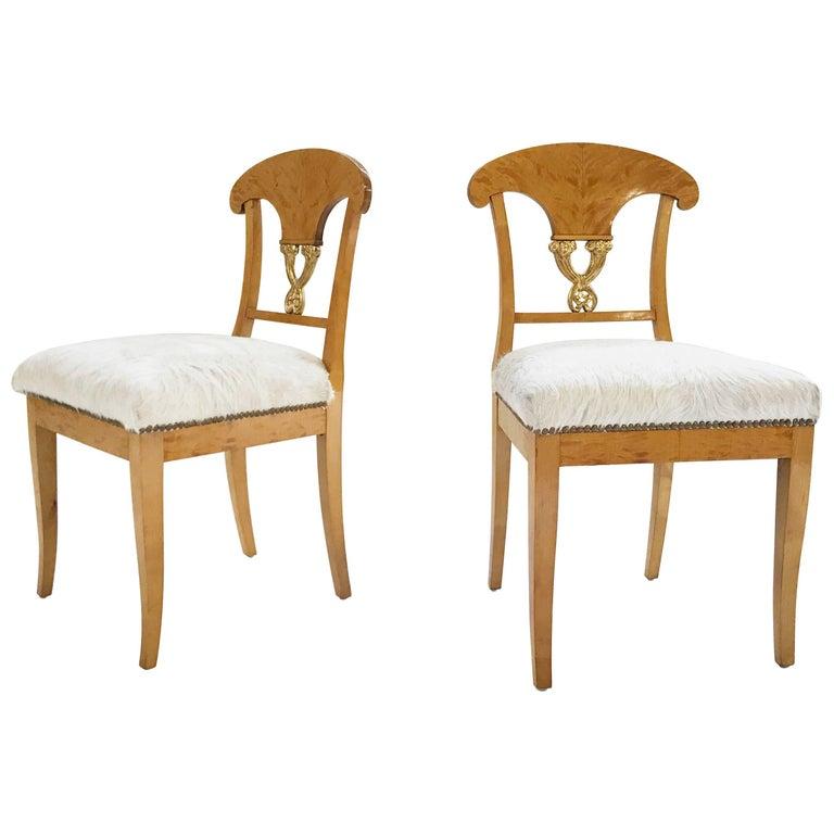 Pair of Satin Birch Biedermeier Chairs in Ivory Brazilian Cowhide, circa 1820 For Sale