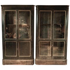Incredible Rare Pair of Apothecary Cabinets from England, circa 1880