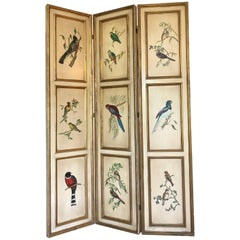 Midcentury Regency Wood Screen or Room Divider with Bird Paintings