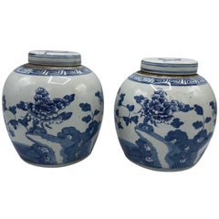 19th Century Blue and White Ginger Jar with Floral Motif, Pair