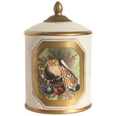 Mottahedeh Seashell Motif Lidded Jar