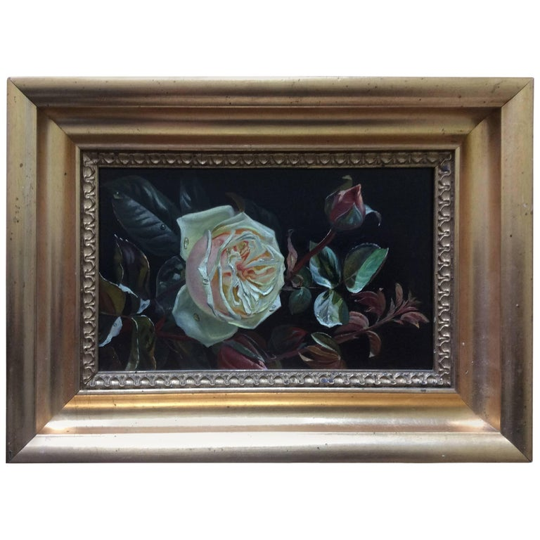 """Flowers a Pink and Cream Rose with Raindrops"" Painting by Sophus Petersen For Sale"