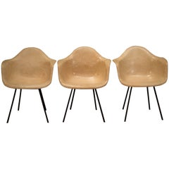 Early Herman Miller Fiberglass Eames Shell Armchair by Zenith