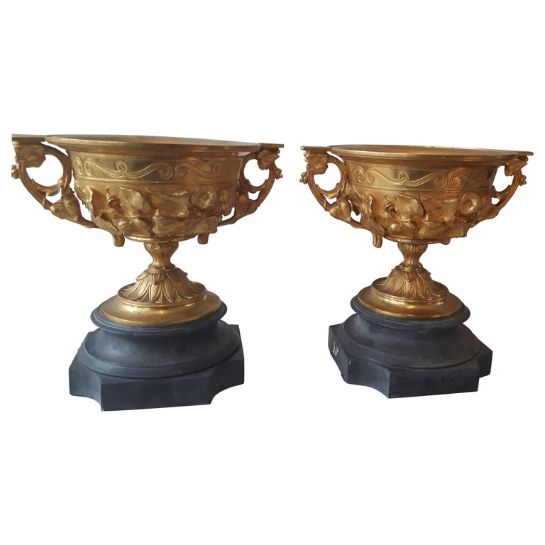Pair of 19th Century French Campana Vases For Sale