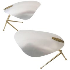 Two Sputnik Table Lamps by Kaiser Leuchten, 1950, Germany