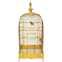 French Yellow Ochre Bird Cage