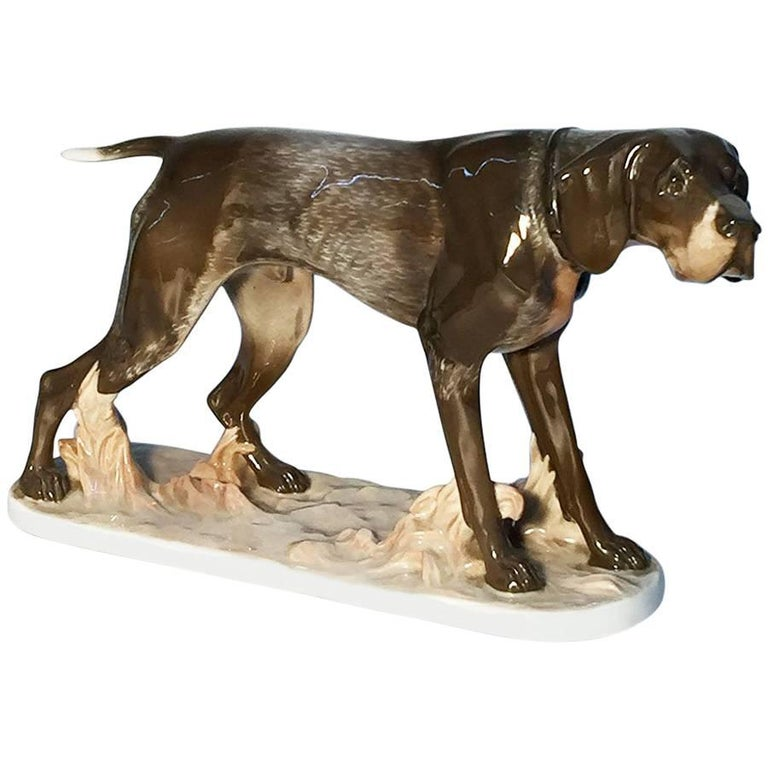 Pointer Dog Figurine, Rosenthal Porcelain by Artist F. Diller, 1913-1927