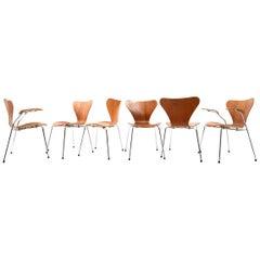 """Set of Six Arne Jacobsen Chairs in Teak """"Series 7"""""""