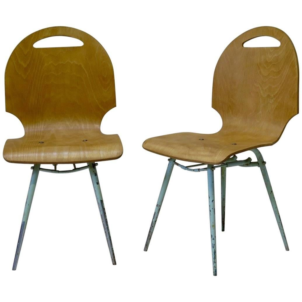 Set of Four French Midcentury Molded Plywood Chairs