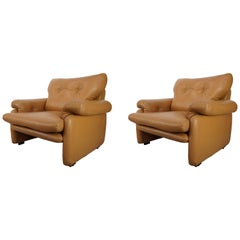 Pair of Leather Coronado Armchairs Design Afra & Tobia Scarpa for B&B Italia