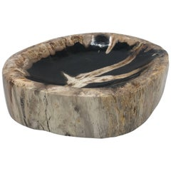 Petrified Wood Catchall Dish
