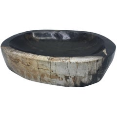 Black Petrified Wood Catchall Dish