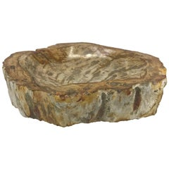 Petrified Wood Catchall Dish with Raw Edging