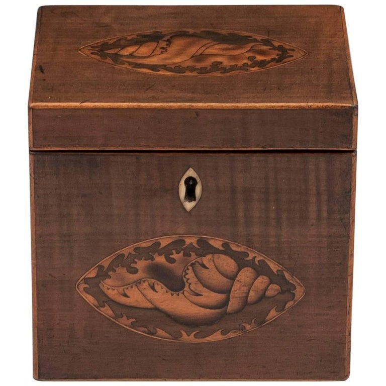 Harewood Antique Single Wooden Tea Caddy with Conch Shells, 18th Century For Sale