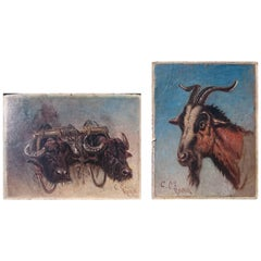 Two Oil on Board Paintings of Study of Oxen and Study of Goat by Charles Coleman