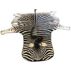 Grade A Equus Burchell Zebra Skin Rug