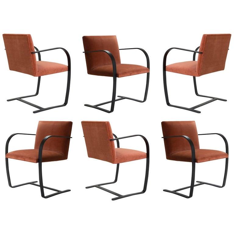 Brno Flat-Bar Chairs in Rust Velvet, Obsidian Matte Frame, Set of Six