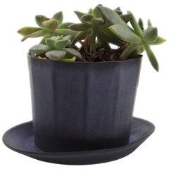 Native Planter Black Succulent Planter Modern Contemporary Glazed Porcelain