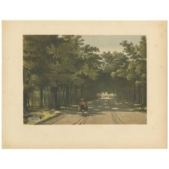 Antique Print of the Royal Arboretum in Batavia by M.T.H. Perelaer, 1888