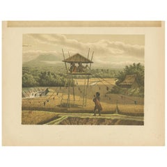 Antique Print of Children chasing Birds by M.T.H. Perelaer, 1888