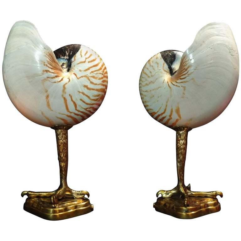 Original Pair of Table Lamps Sea Claw by Pascucci, Italy, 1950