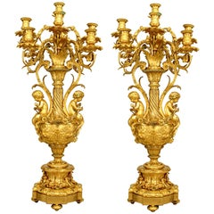 Pair of French Louis XV Style '19th Century' Urn Shaped Nine-Arm Candelabra