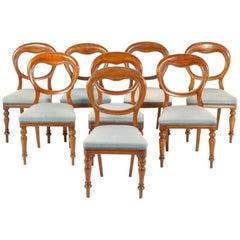 Six Balloon-Back Victorian Chairs