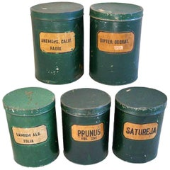 Antique Green Tole Herbalist Apothecary Tins, Set of Five
