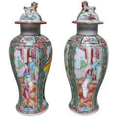 Pair of Chinese Porcelain Rose Mandarin Jars with Lids