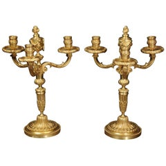 Antique French Pair of Gilt Bronze Neoclassical Candelabra