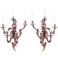 Pair of French Louis XV Style '19th Century' Monumental Five-Arm Wall Sconces