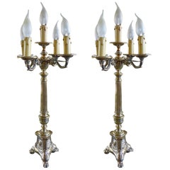 19th Century Pair of French Silver Plated Table Lamps