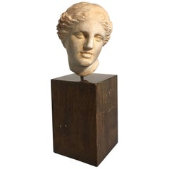 19th Century Carved Marble Head of Apollo