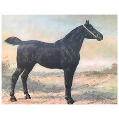 Silk Print from a Frisian Horse