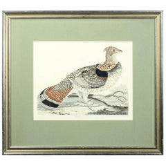Original Hand-Colored Engraving of a 'Ruffed Grouse' by Alexander Wilson, 1808