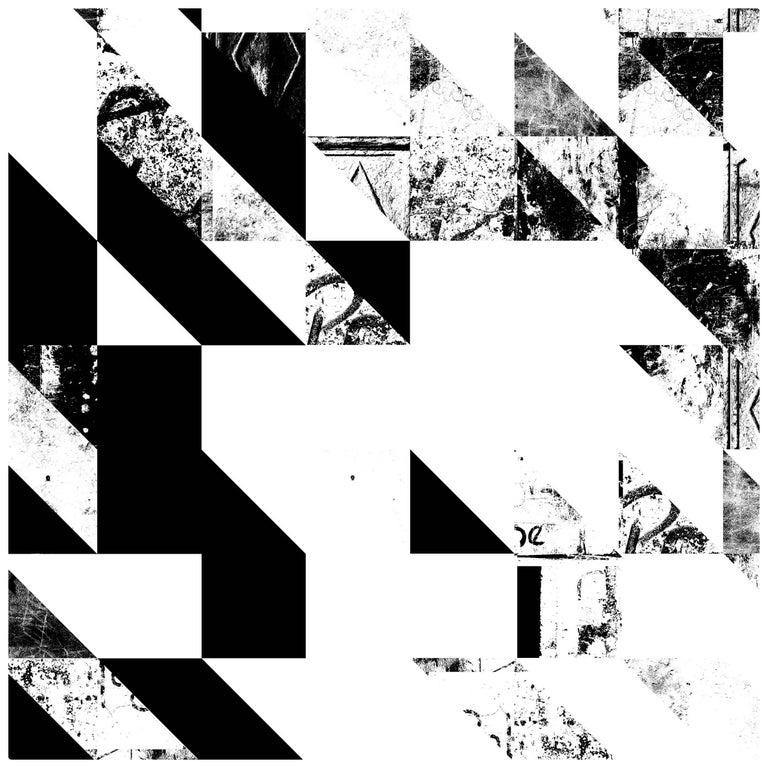 Disintegration Wallpaper in Black and White For Sale