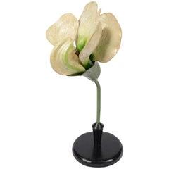 Model of the Pea Flower German Manufacture of the Twenties