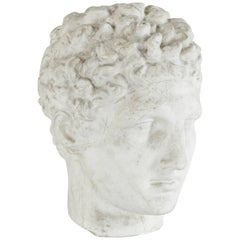 Mid-20th Century French Plaster Bust of a Classical Greek Head